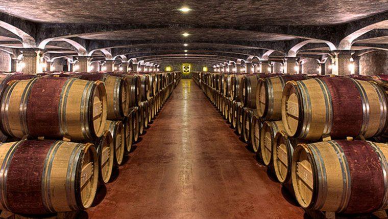 Региональное виноделие