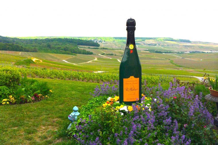 Шампань - родина игристого вина